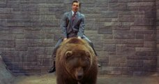 I'm riding a furry tractor